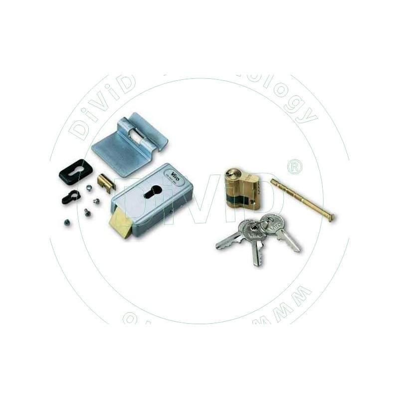 Yala electromagnetica pentru porti batante automate